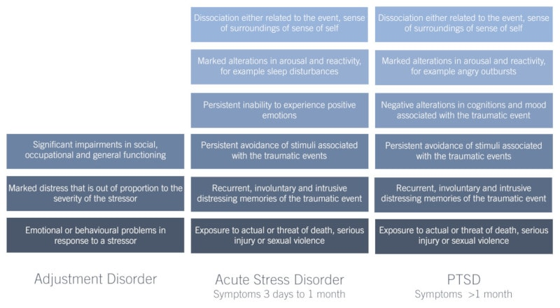 Presenting symptoms of Adjustment Disorder, Acute Stress Disorder and PTSD for psychological assessments